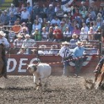 The Rodeo Gallery Ellensburg Rodeo