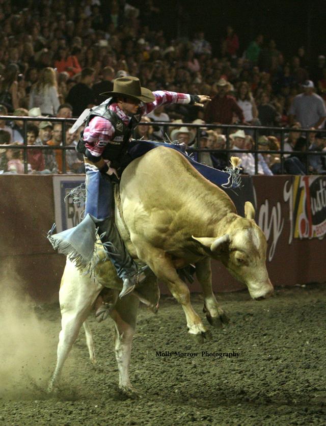 Xtreme Bulls Gallery Ellensburg Rodeo